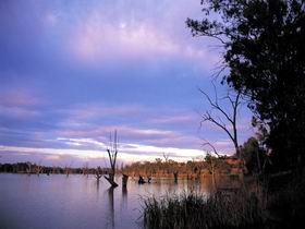 Loch Luna Game Reserve and Moorook Game Reserve - ACT Tourism