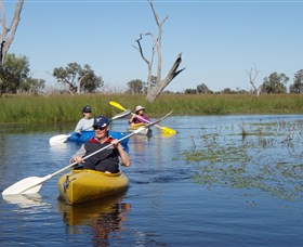 Marsh Meanders - ACT Tourism