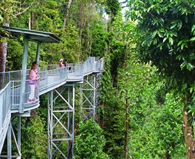 Mamu Tropical Skywalk