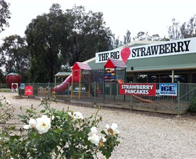 The Big Strawberry - ACT Tourism