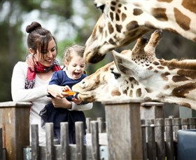 Taronga Western Plains Zoo Dubbo - ACT Tourism