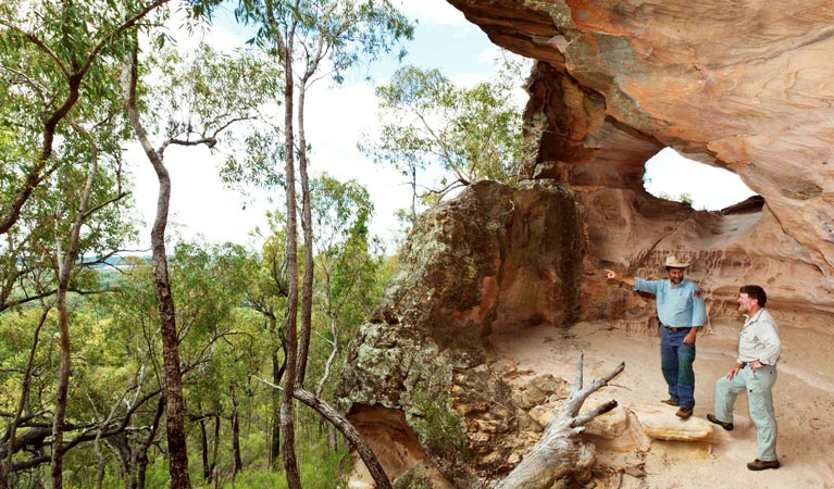 Pilliga National Park - ACT Tourism