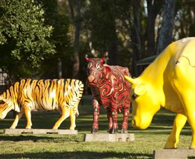 Greater Shepparton's Moooving Art - ACT Tourism