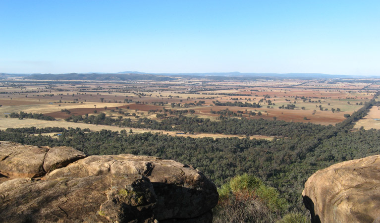 Basin Gully to Eualdrie lookout track - ACT Tourism
