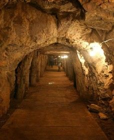 Wellington Caves and Phosphate Mine - ACT Tourism