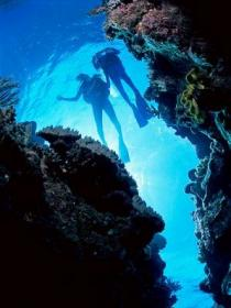 Caves and Canyons Dive Site - ACT Tourism