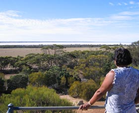 Lake Grace Lookout - ACT Tourism