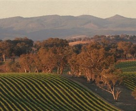 Angullong Wines - ACT Tourism