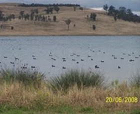Lake Liddell Recreation Area - ACT Tourism