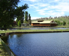 Gaden Trout Hatchery - ACT Tourism