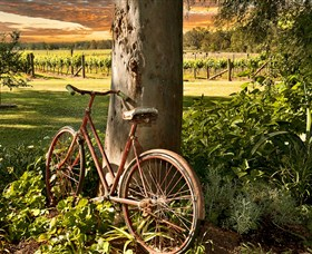 Stomp Wines - ACT Tourism