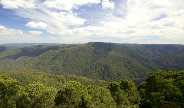 Barrington Tops National Park - ACT Tourism
