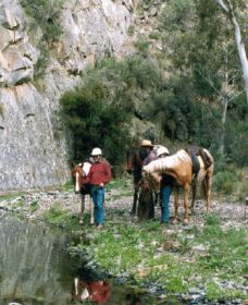 Yarramba Horse Riding - ACT Tourism
