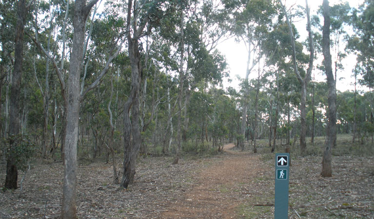 Green track - ACT Tourism