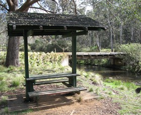 Barrington Tops State Forest - ACT Tourism