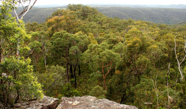 Mount Olive lookout - ACT Tourism