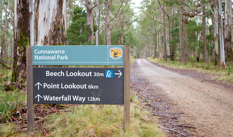 Beech lookout - ACT Tourism