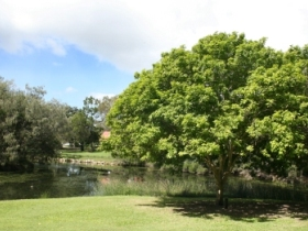 Hervey Bay Botanic Gardens - ACT Tourism