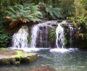 Barrington Tops National Park Walks - ACT Tourism