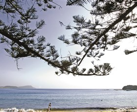 Terrigal Beach - ACT Tourism