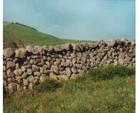 Historic Dry Stone Walls - ACT Tourism