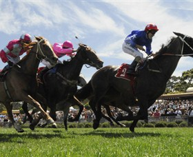 Moruya Racecourse - ACT Tourism