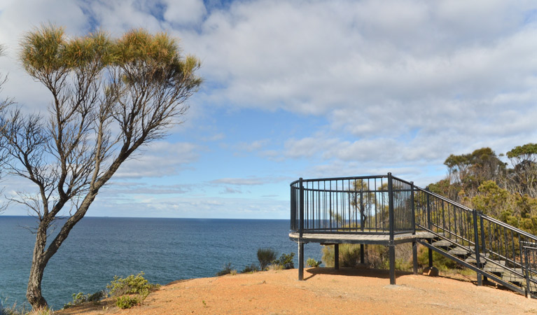 North Head lookout - ACT Tourism