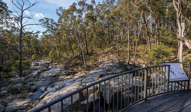Myanba Gorge walking track - ACT Tourism