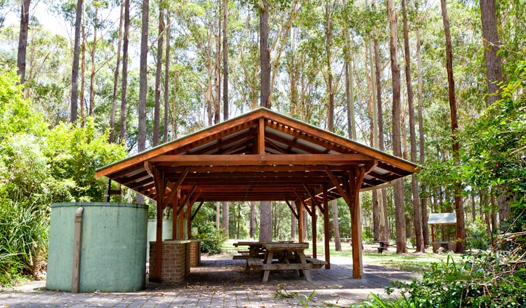 Bongil picnic area - ACT Tourism