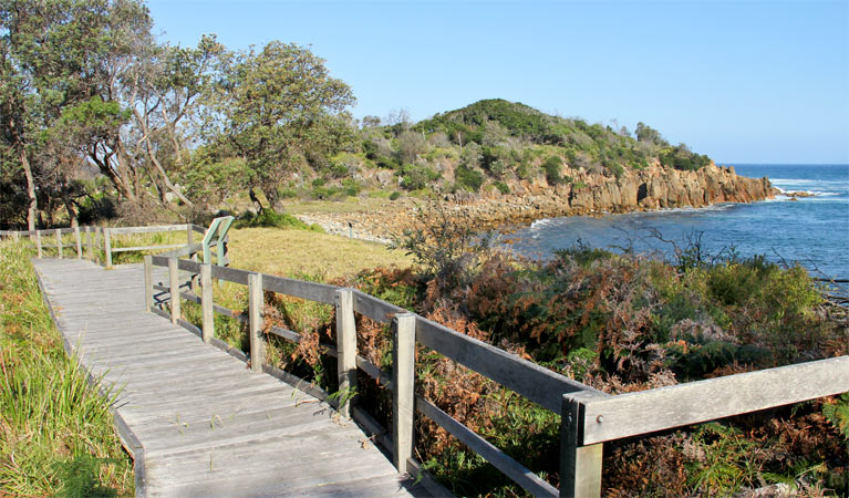 Mimosa Rocks walking track - ACT Tourism