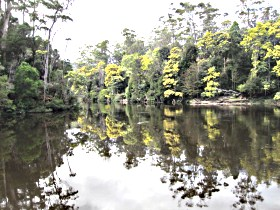 Arthur River - ACT Tourism
