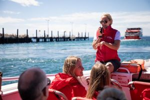 Rottnest Island Tour from Perth or Fremantle including Adventure Speed Boat Ride - ACT Tourism