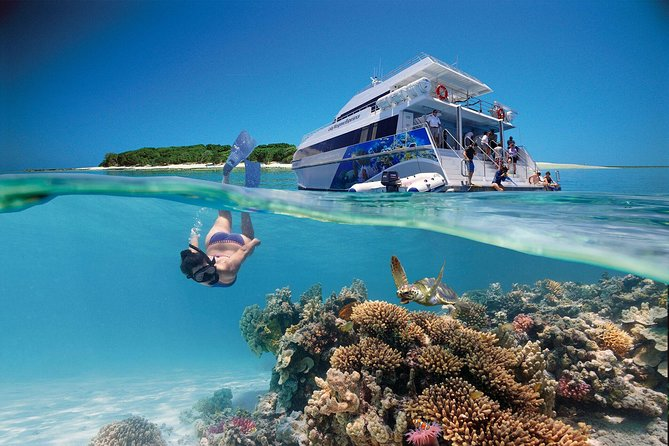 -Day Southern Great Barrier Reef Tour Including Lady Musgrave Island