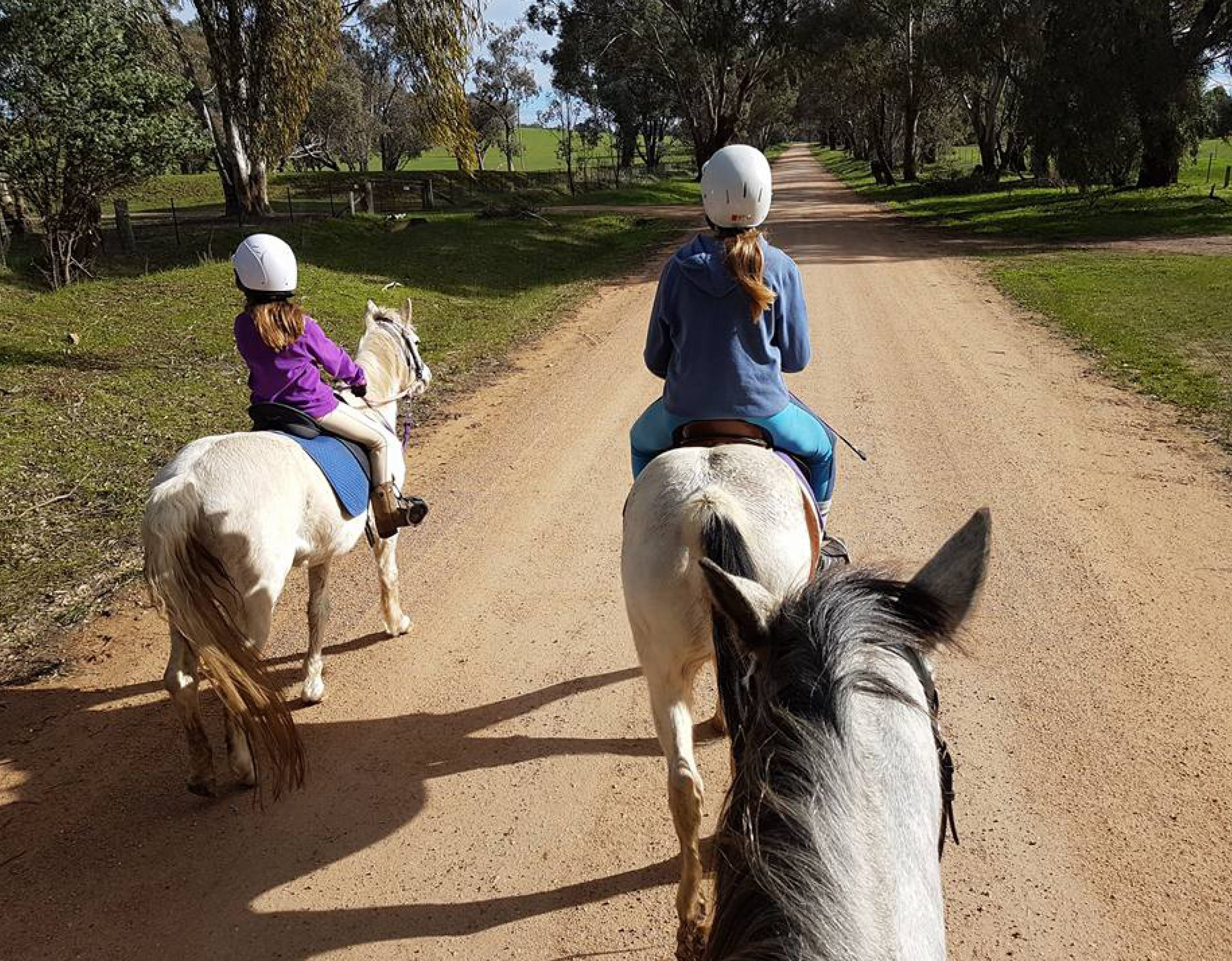 Bits and Boots Pony Rides - ACT Tourism