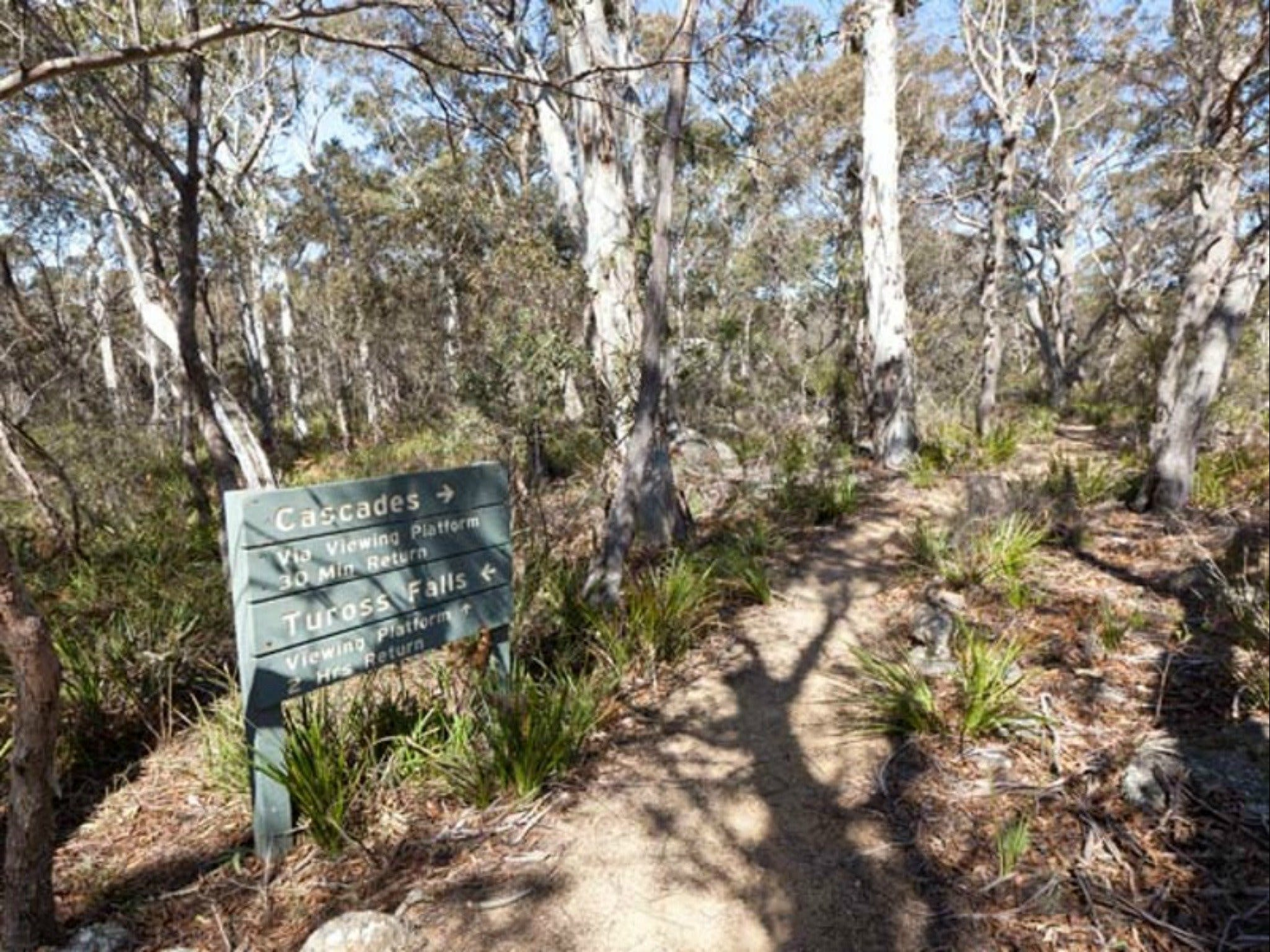 Cascades walking track and viewing platform - ACT Tourism