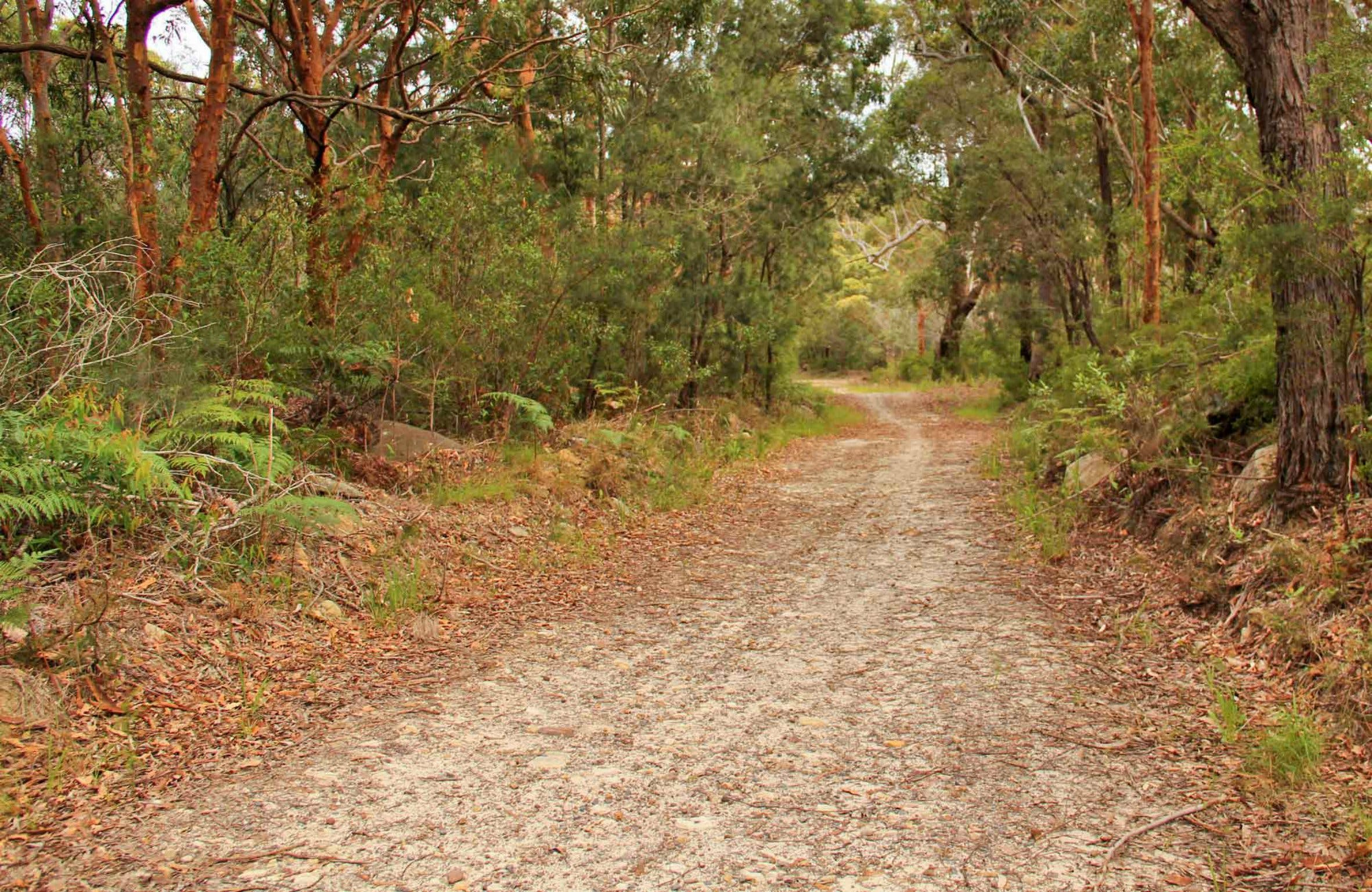 Daleys Point Walking Track - ACT Tourism