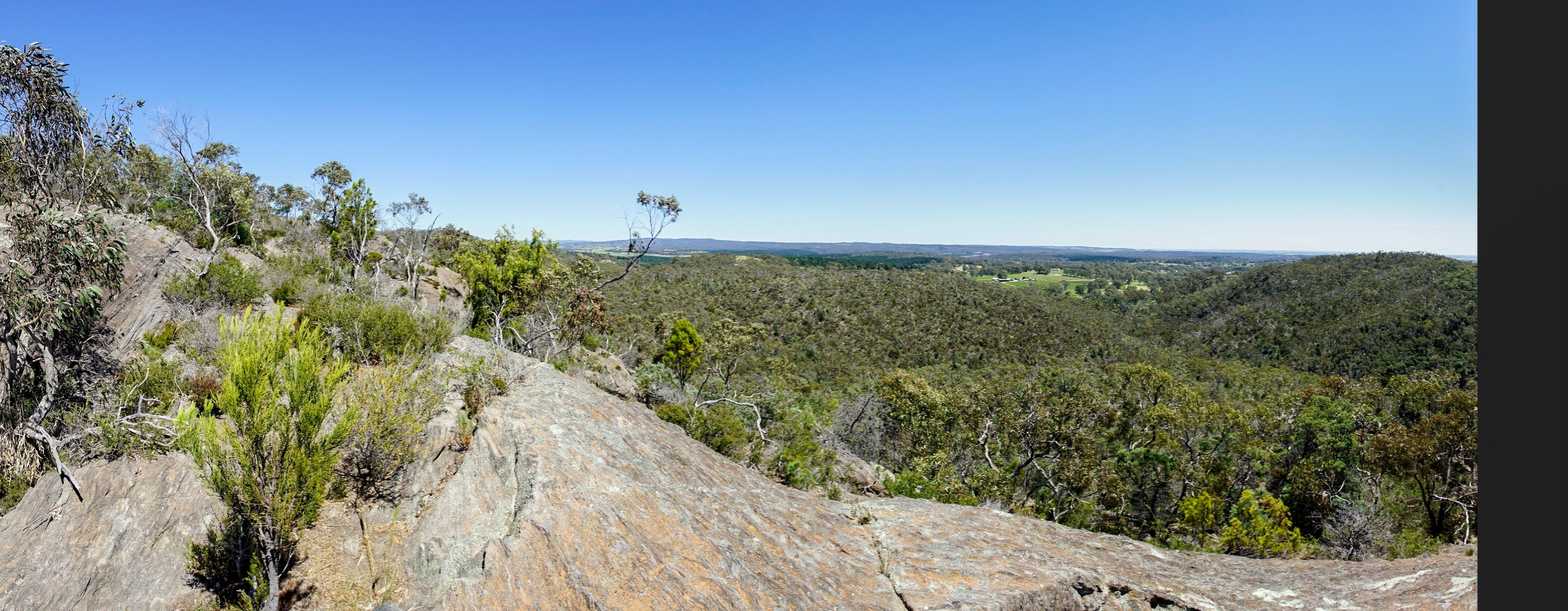 Hale Conservation Park - ACT Tourism