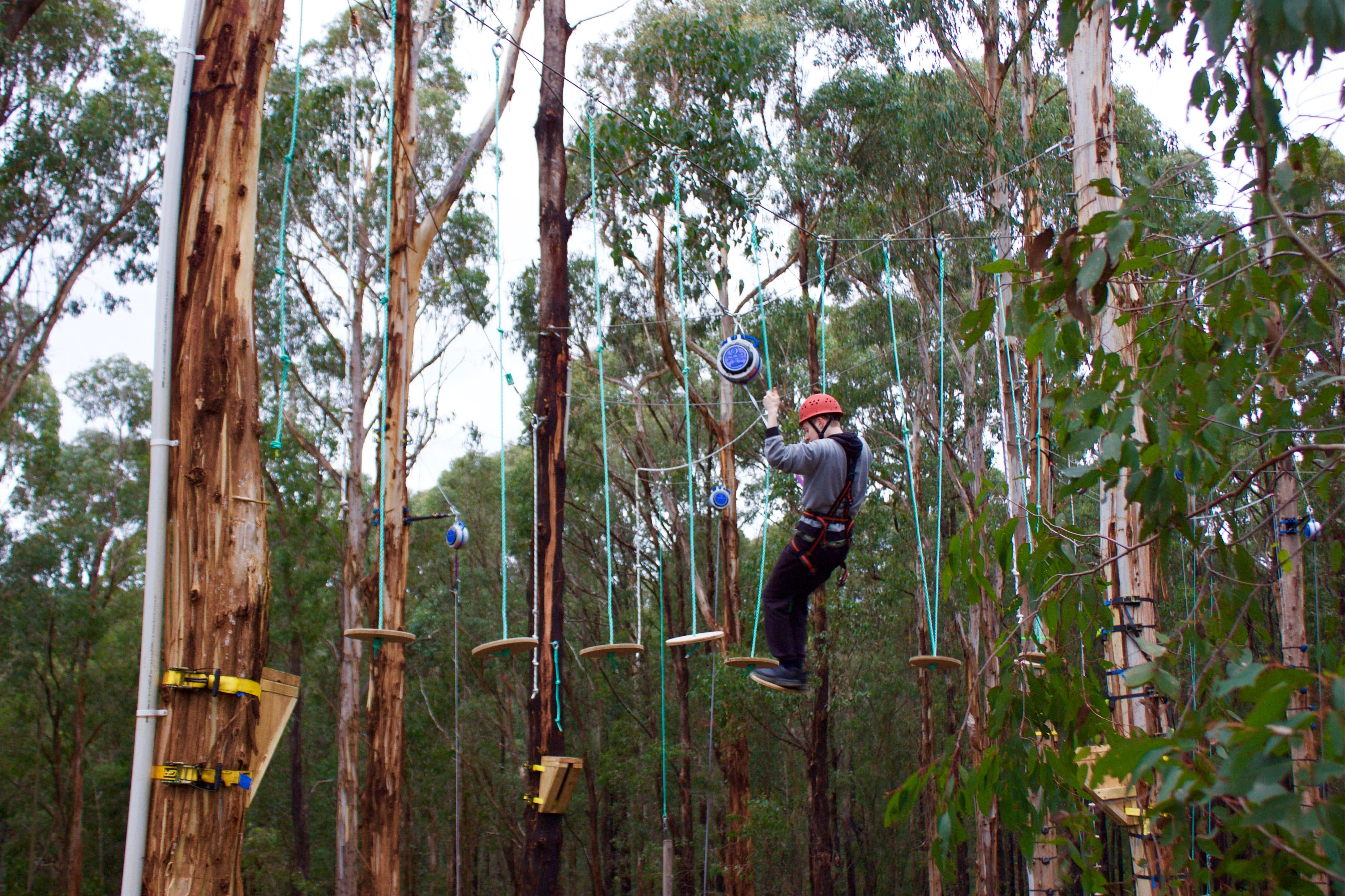 Kinglake Forest Adventures - ACT Tourism
