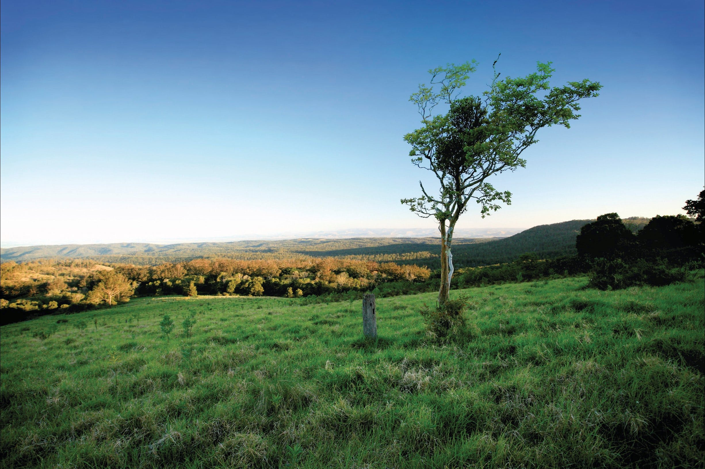 Ravensbourne National Park - ACT Tourism