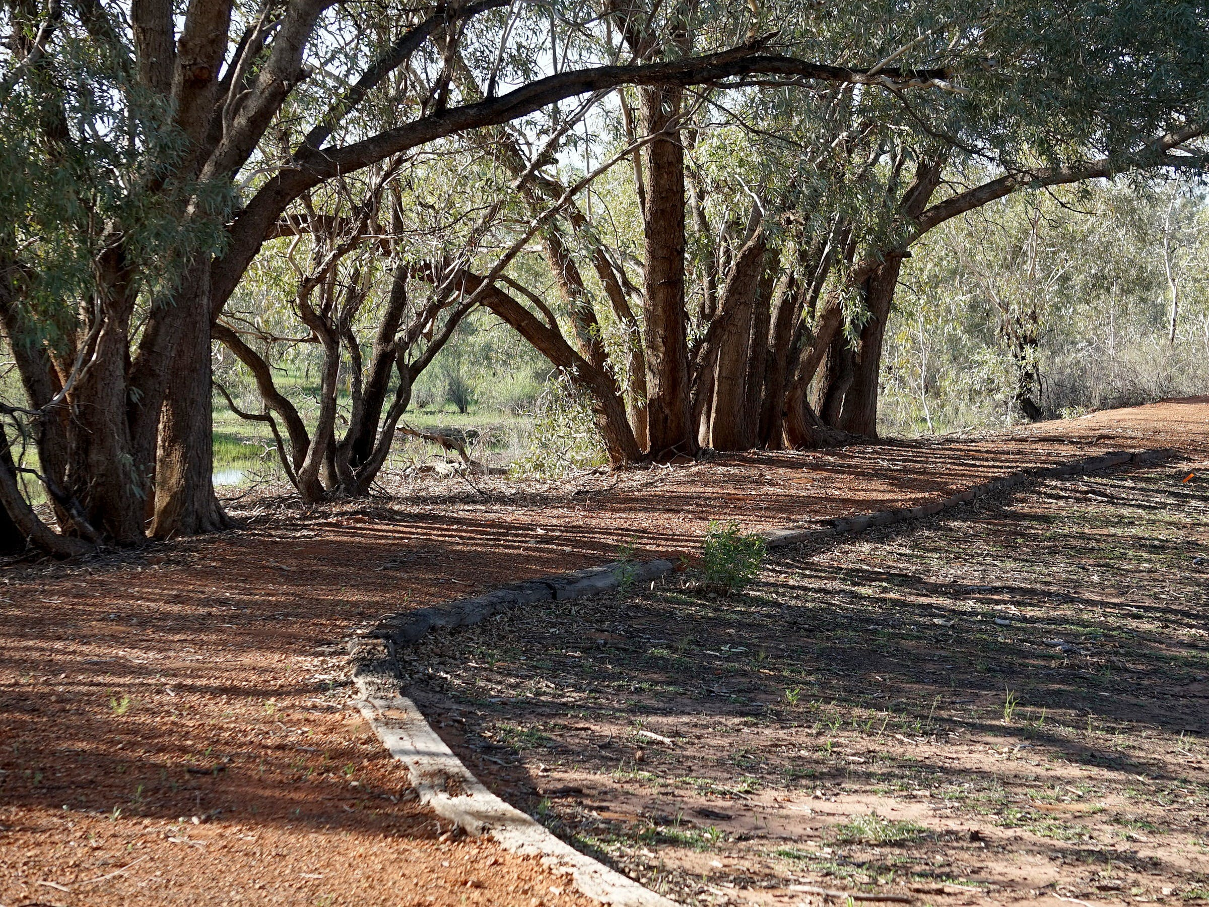Warrego Floodplain walking track - ACT Tourism