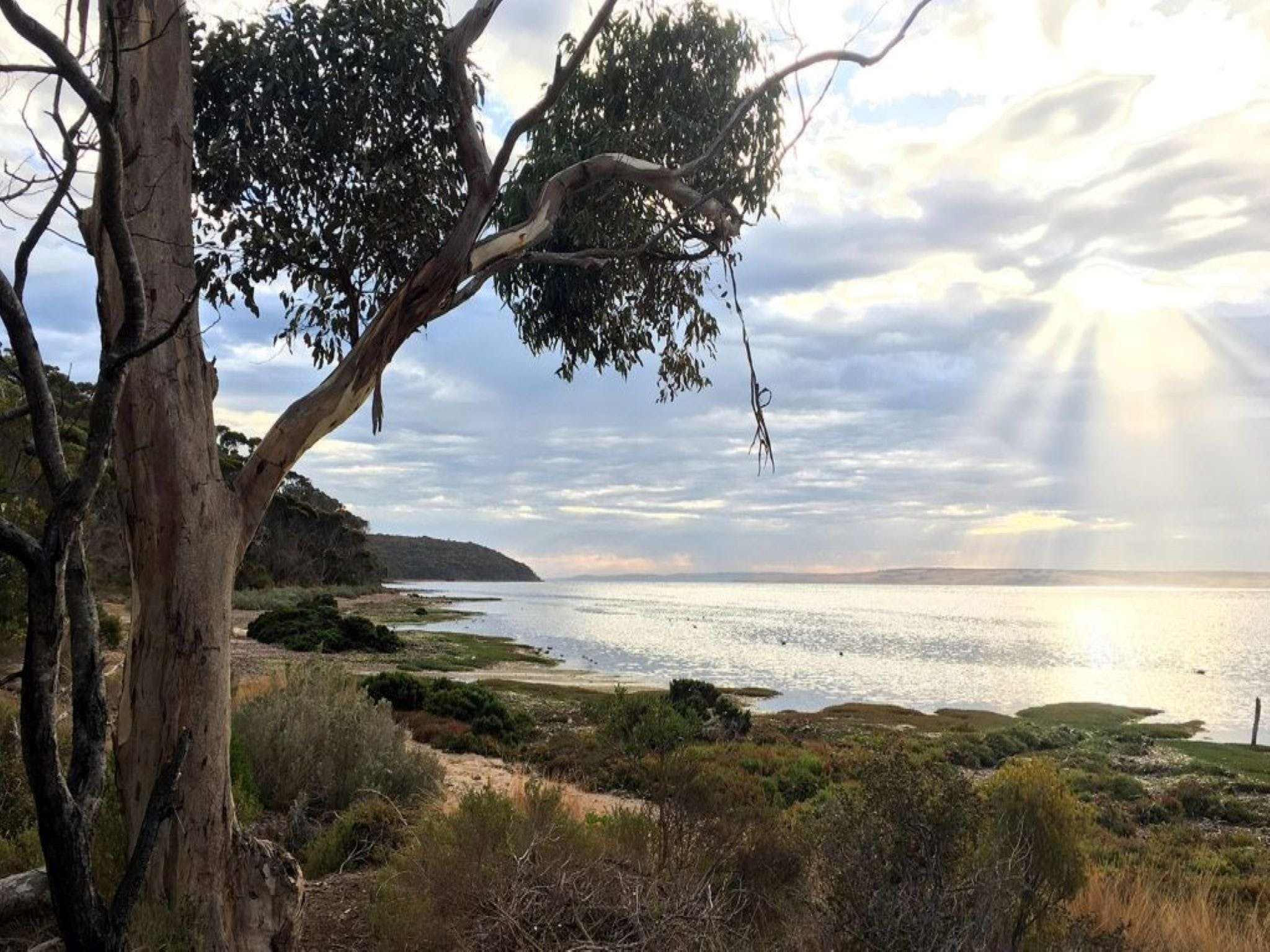 Fish Cannery Walking Trail - ACT Tourism