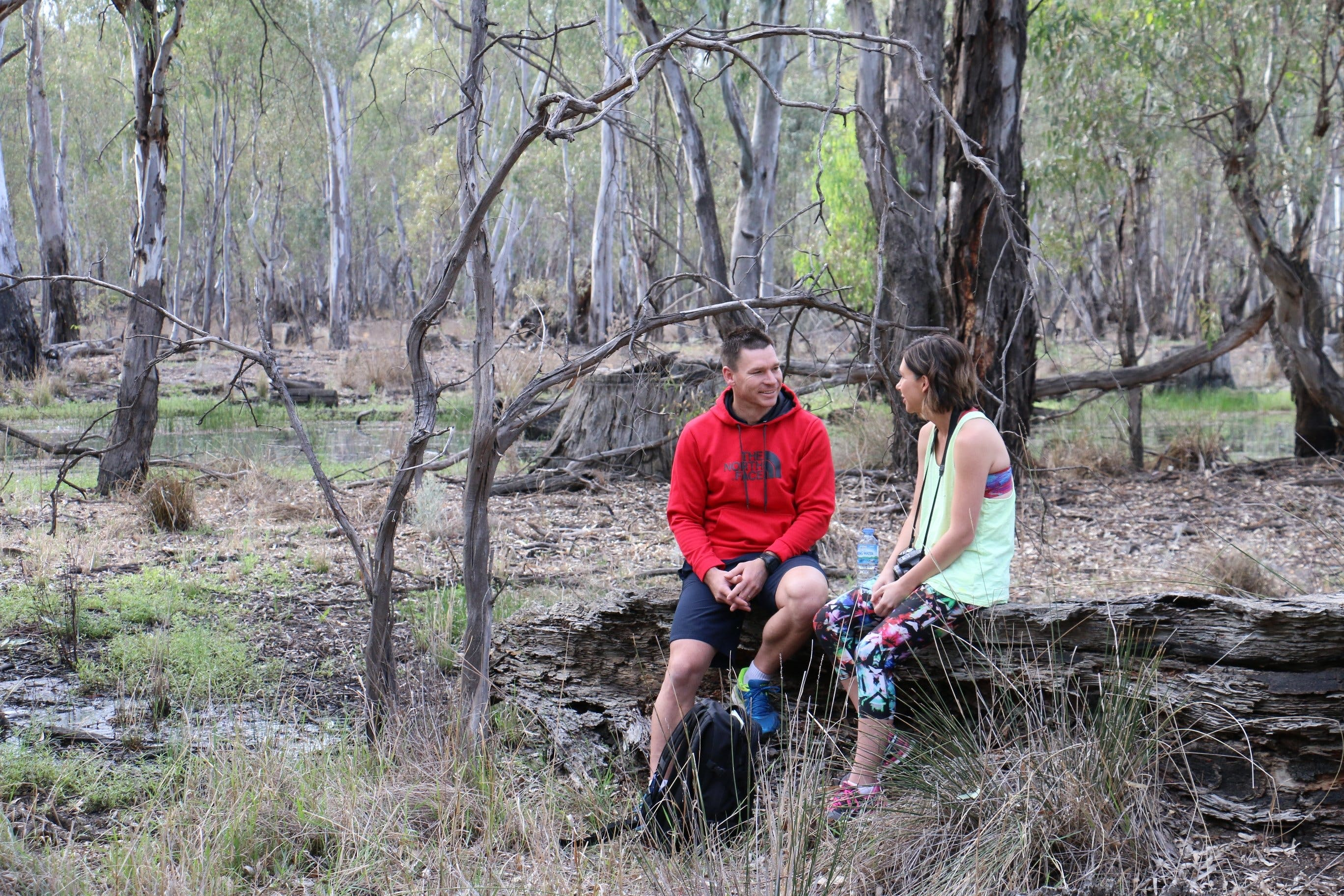 Gunbower Island Forest Drive - ACT Tourism