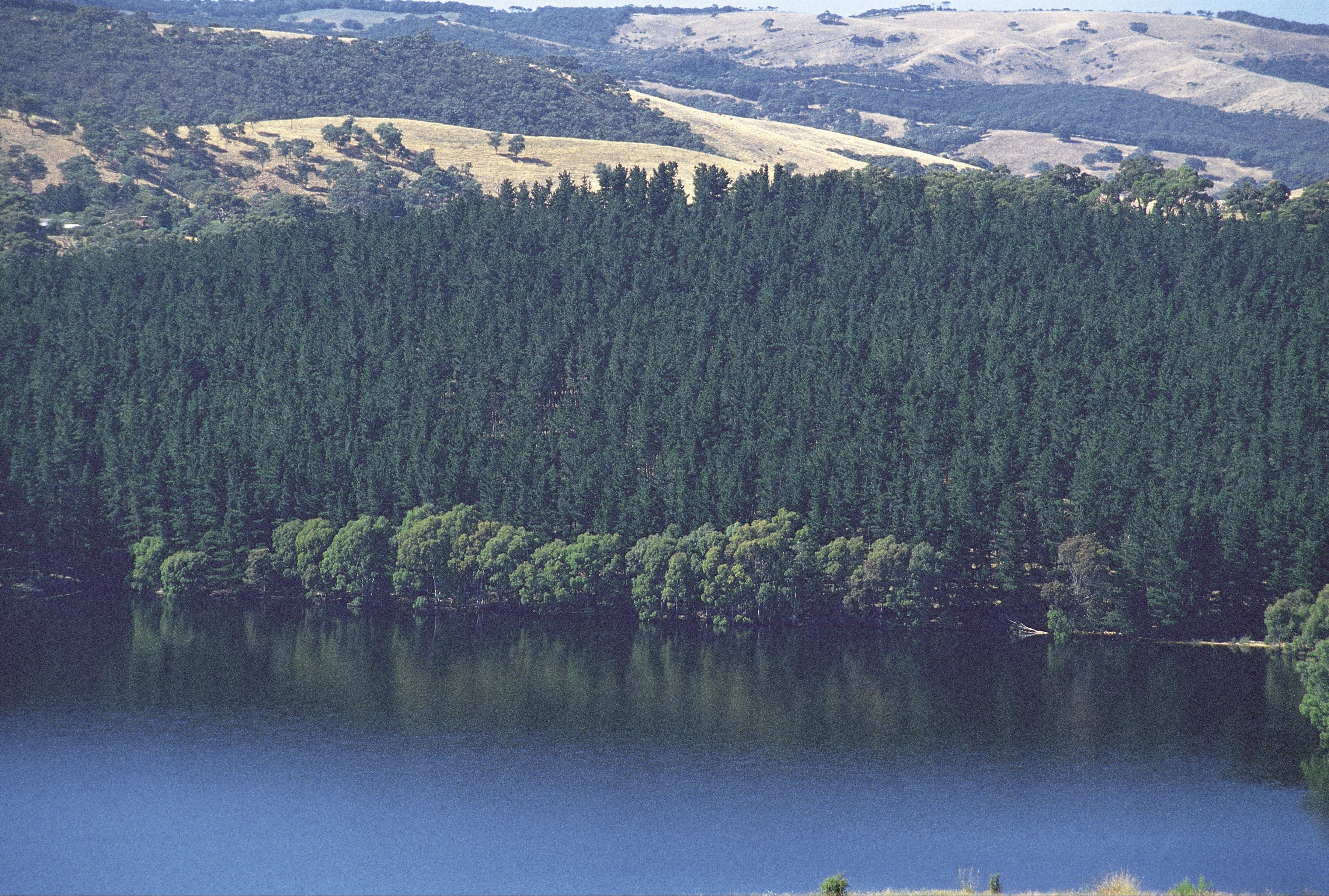 Myponga Reservoir Lookout - ACT Tourism