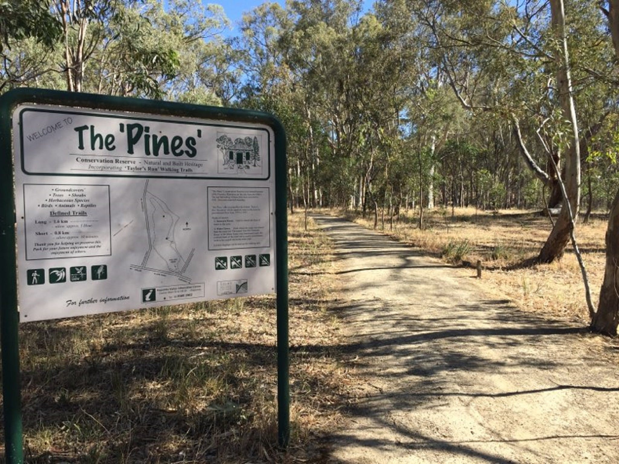 The Pines Conservation Reserve - ACT Tourism