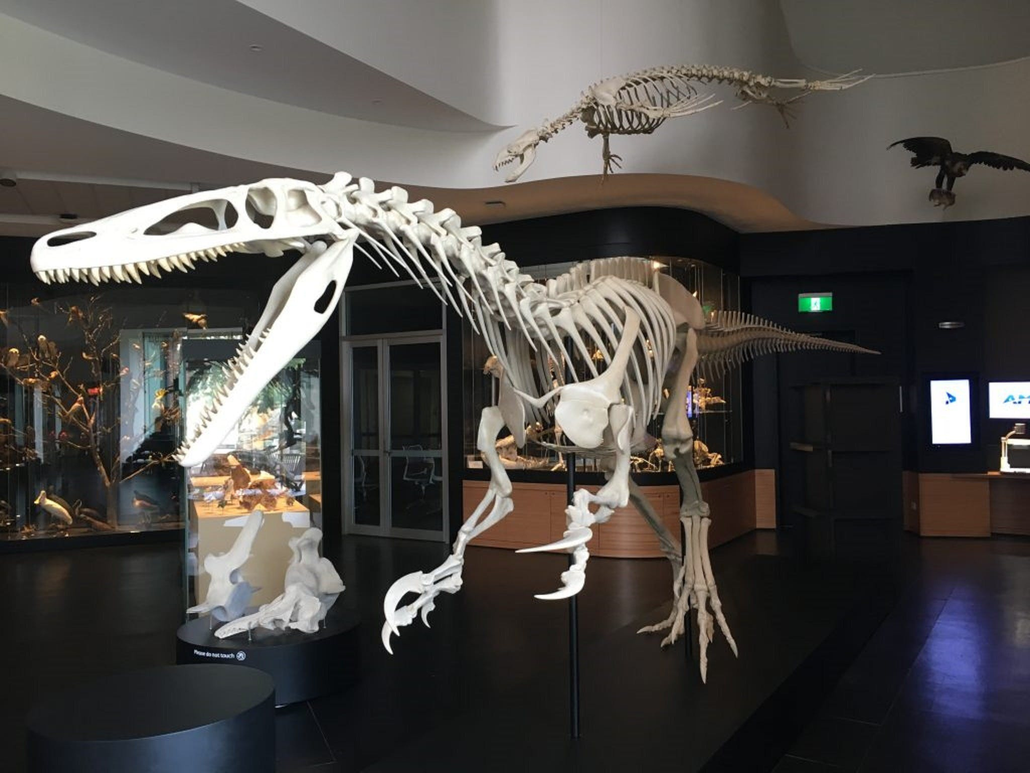 UNE Natural History Museum - ACT Tourism