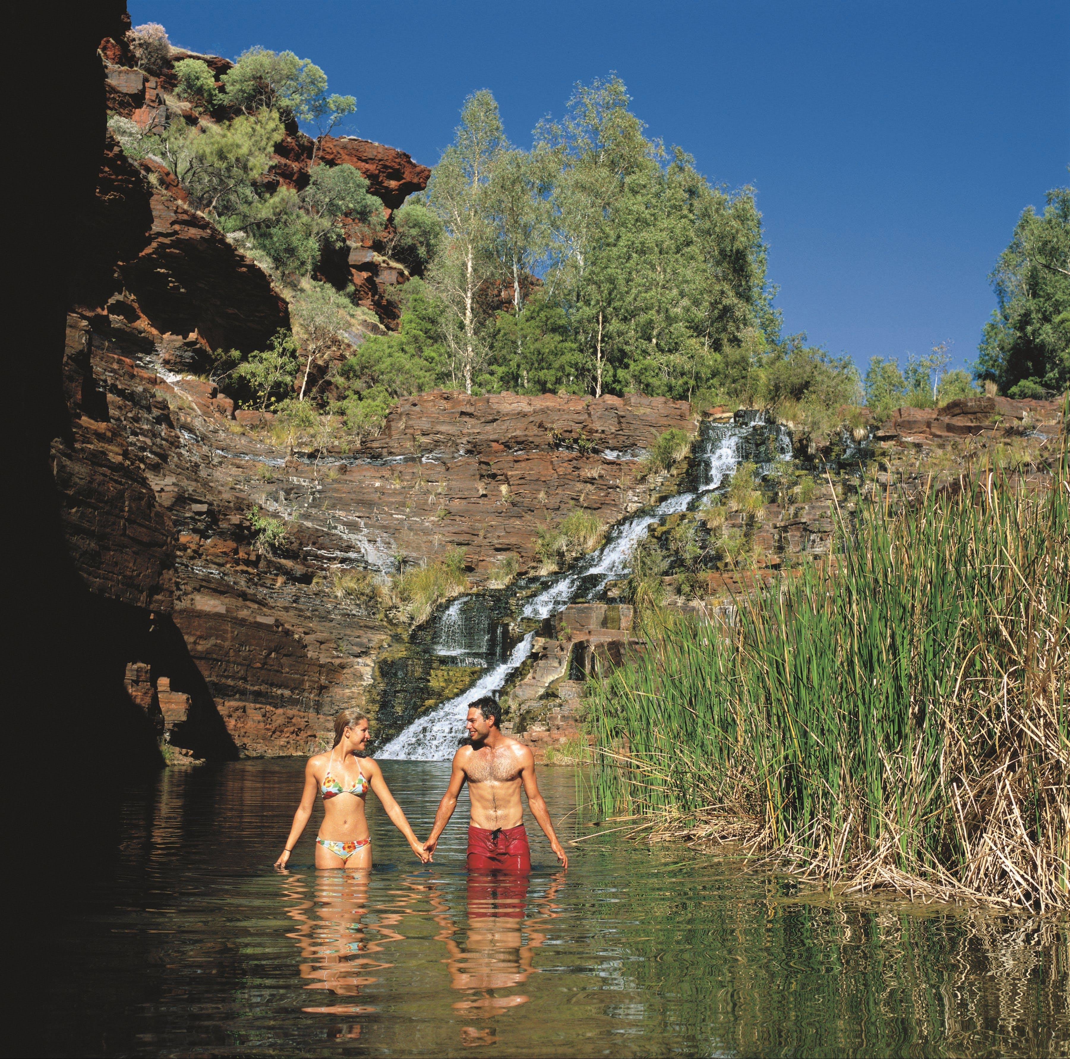 Fortescue Falls - ACT Tourism