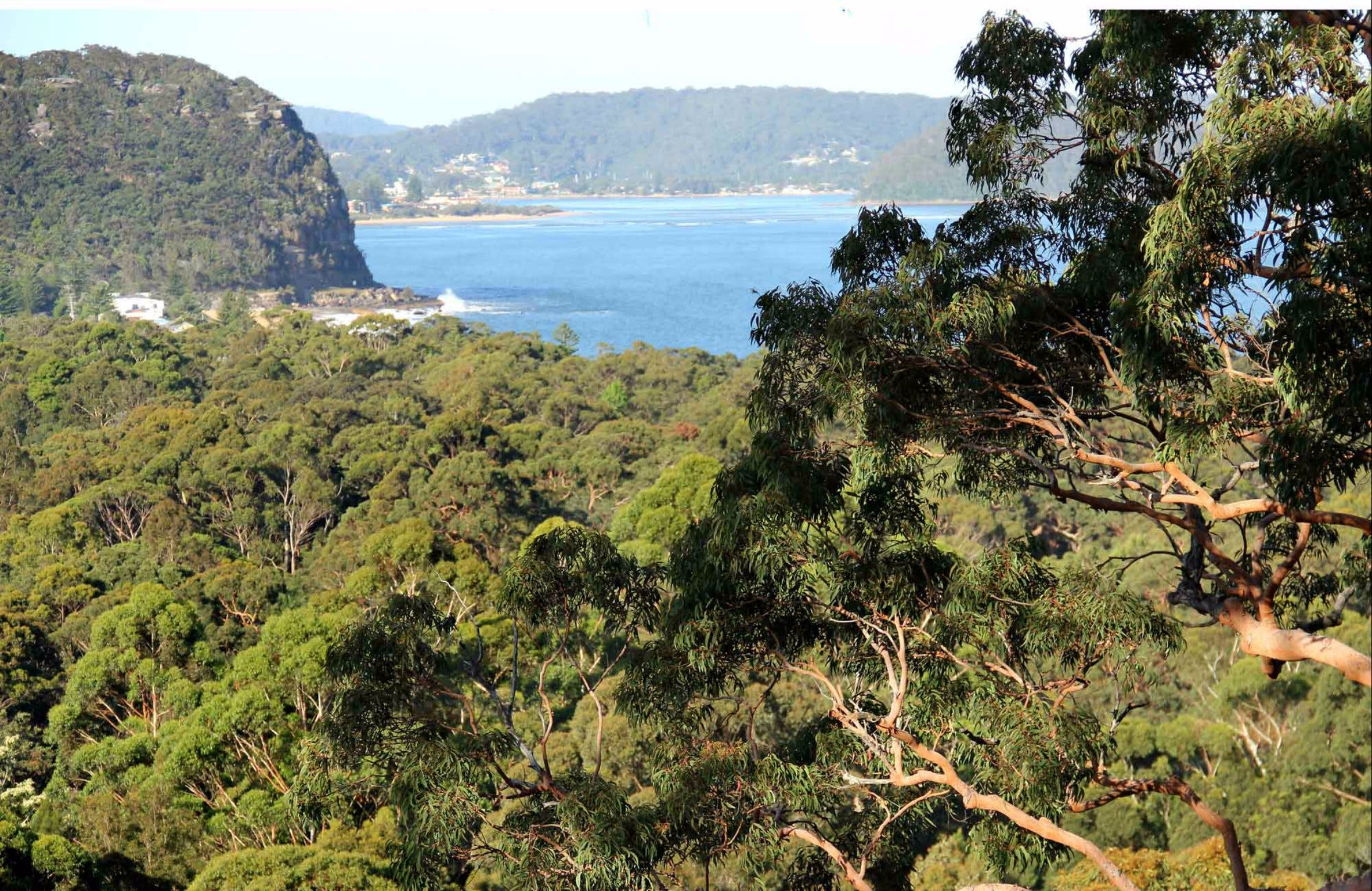 Patonga to Pearl Beach Walking Track - ACT Tourism