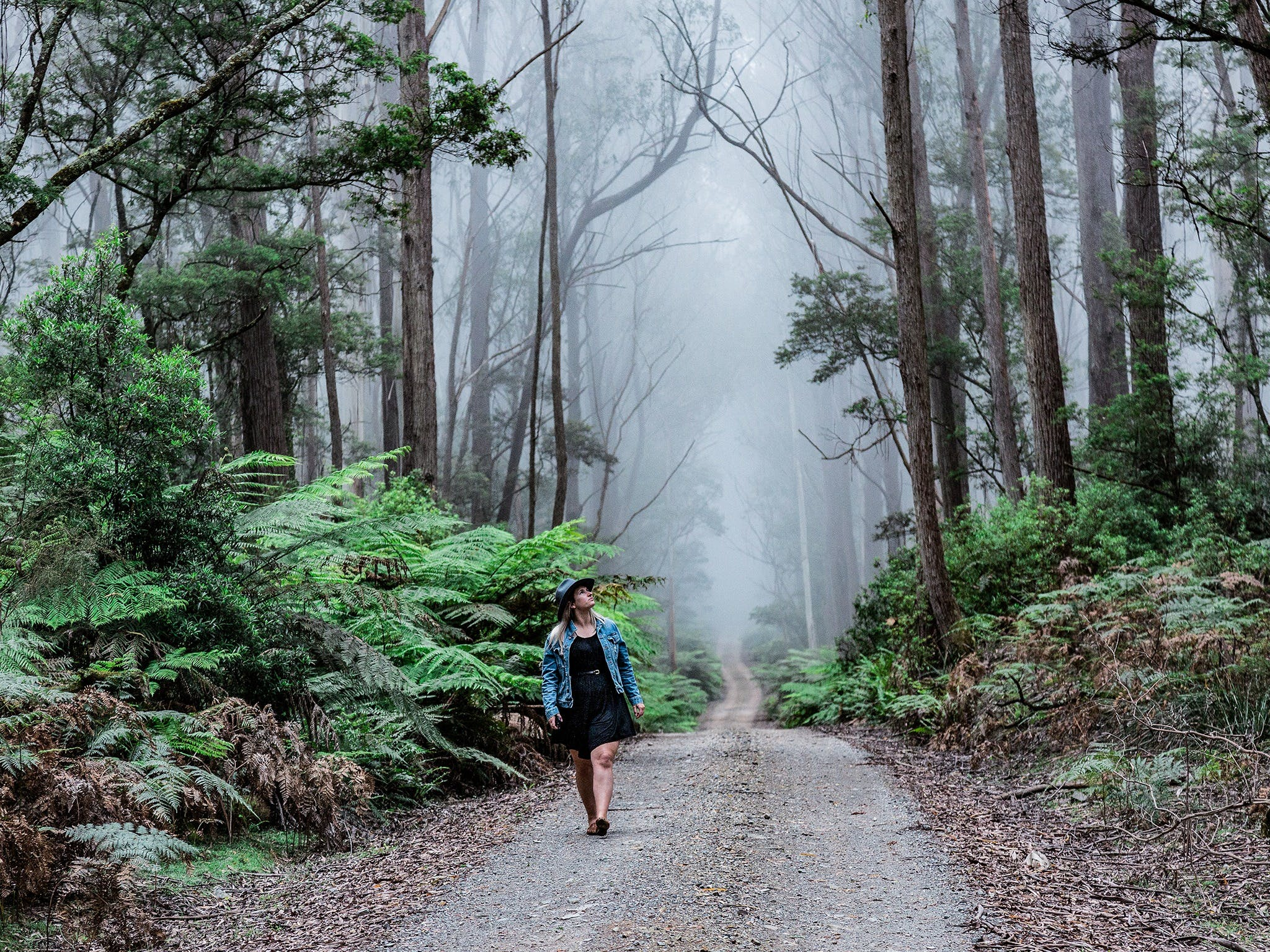 The Corn Trail Walking Track - ACT Tourism