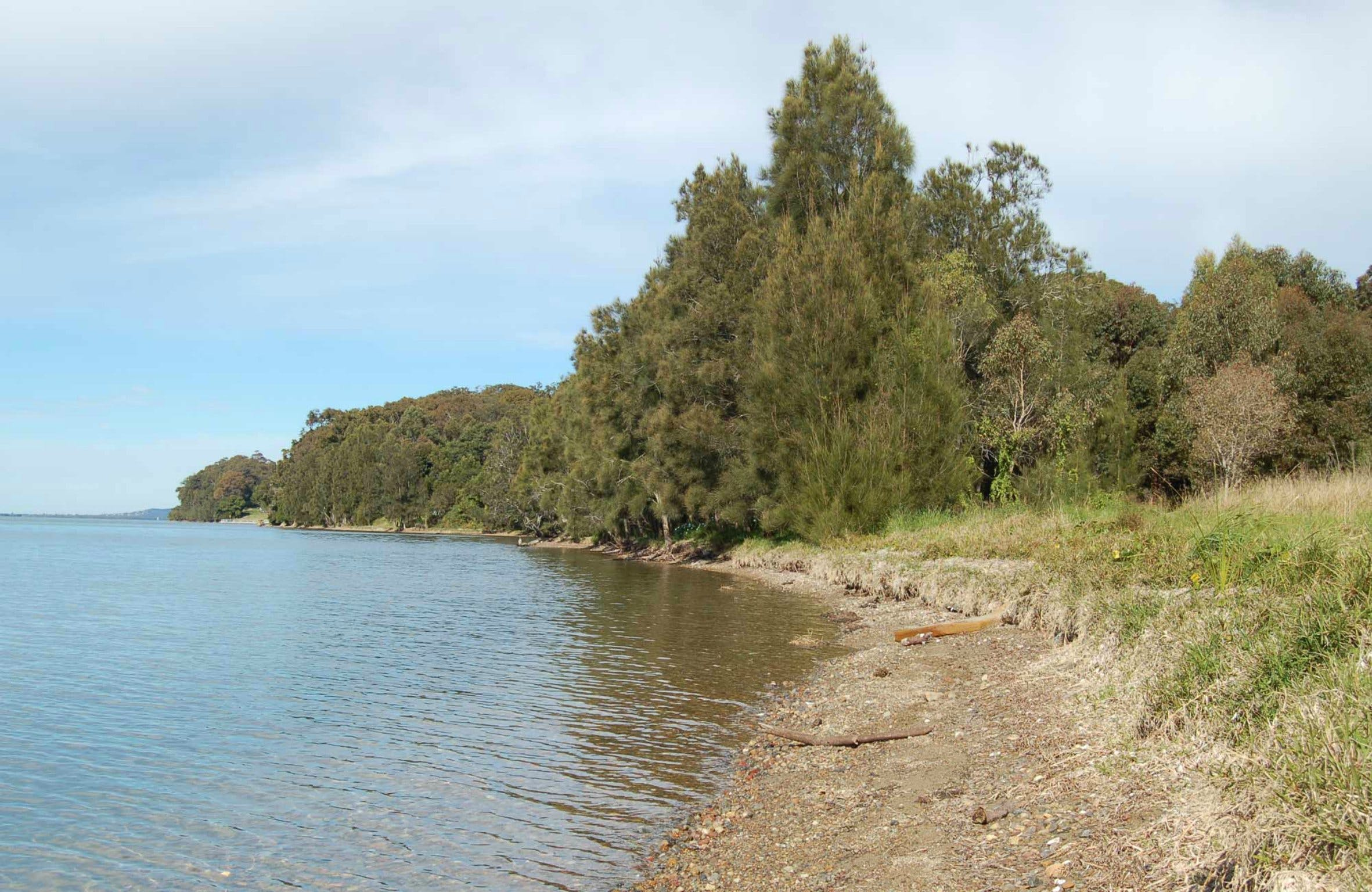 Lake Macquarie State Conservation Area - ACT Tourism