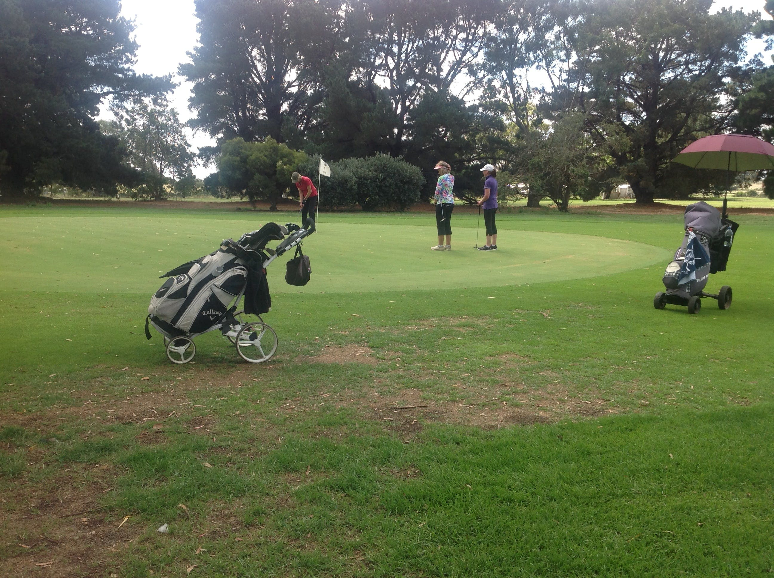 Mortlake Golf Club - ACT Tourism